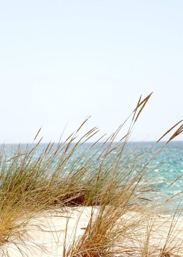 Ferienhausverwaltung Timmendorfer Strand